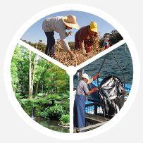 agricultura-pescas-floresta